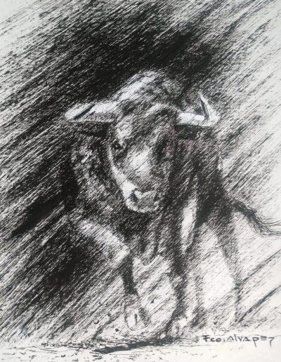 Toro 3 tinta sobre papel