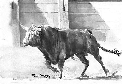 Toro Salida